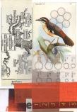 Consciousness IV 2013