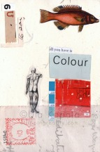 All You Have is Colour, 2013
